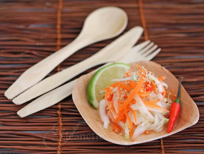 Asian Napa Cabbage Carrot Salad served with non-toxic, biodegradable, compostable dinnerware (by Verterra)