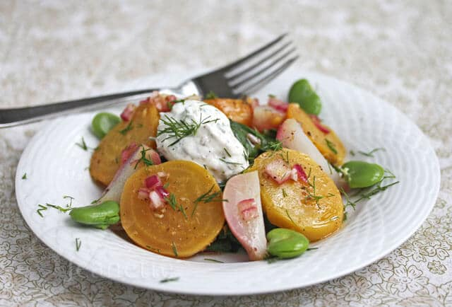 Warm Braised Beet Salad with Beet Greens and Yogurt Sauce (Yellow Beets, Radishes, Fava Beans)