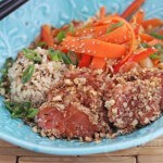 Walnut Crusted Seared Wasabi Salmon  Jeanette&#039;s Healthy Living