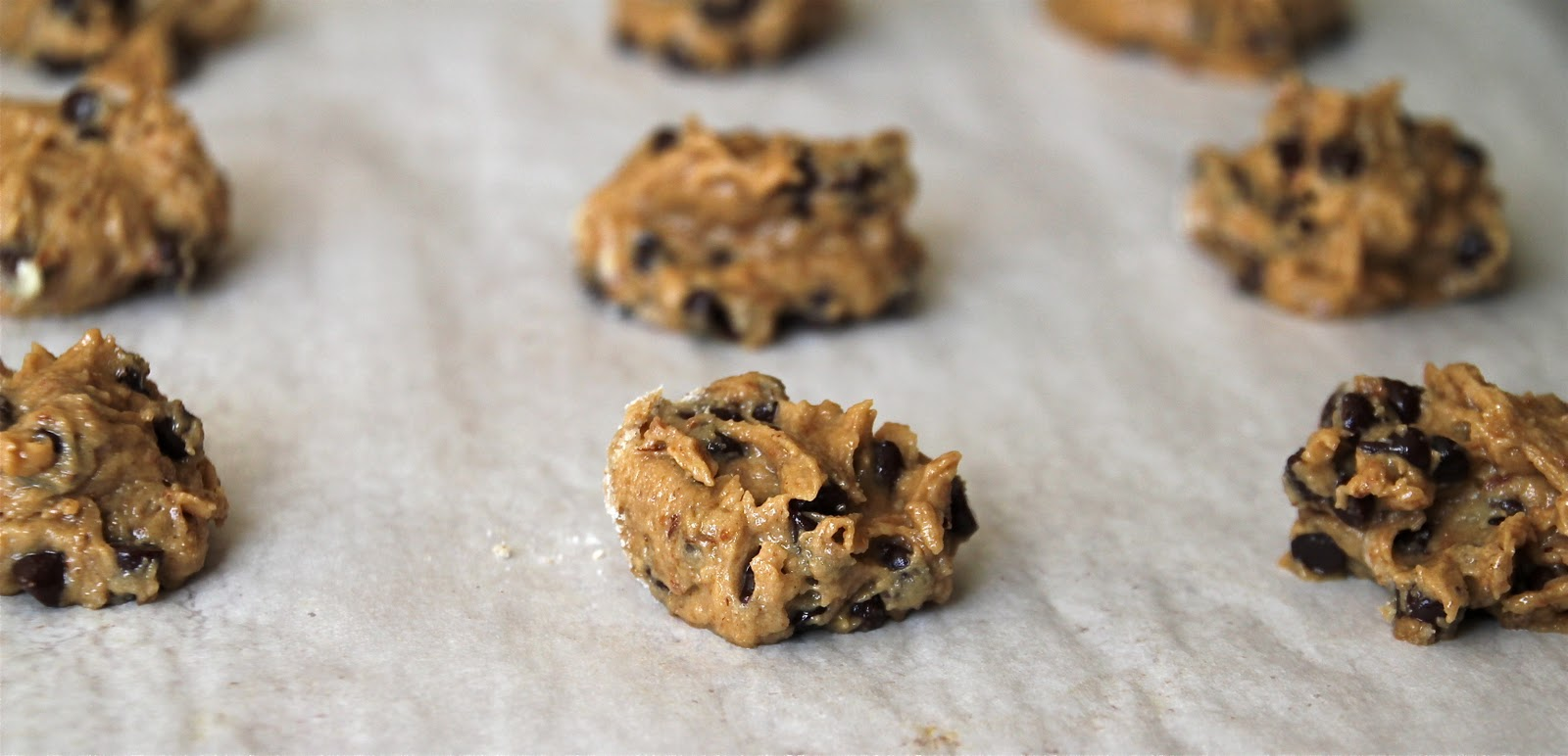 Gluten/Dairy/Egg/Soy Free Vegan Toll House Chocolate Chip Cookies ...