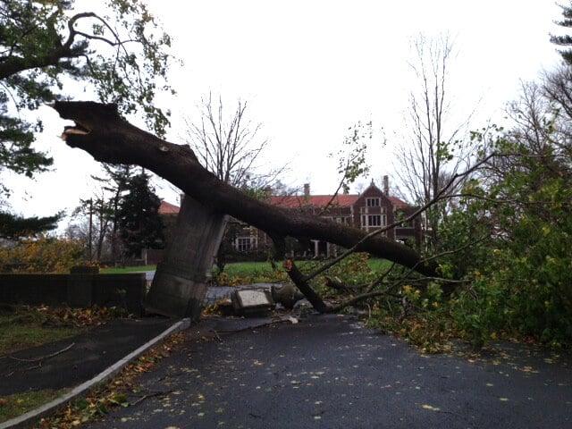 Hurricane Sandy – Grateful