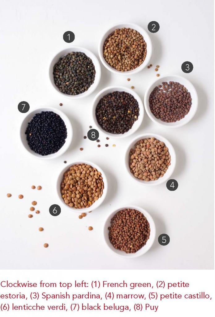 Lentil Varieties from The Essential Good Food Guide