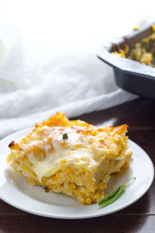 Cheesy Chicken Butternut and Sage Lasagna - a great way to use up leftover chicken