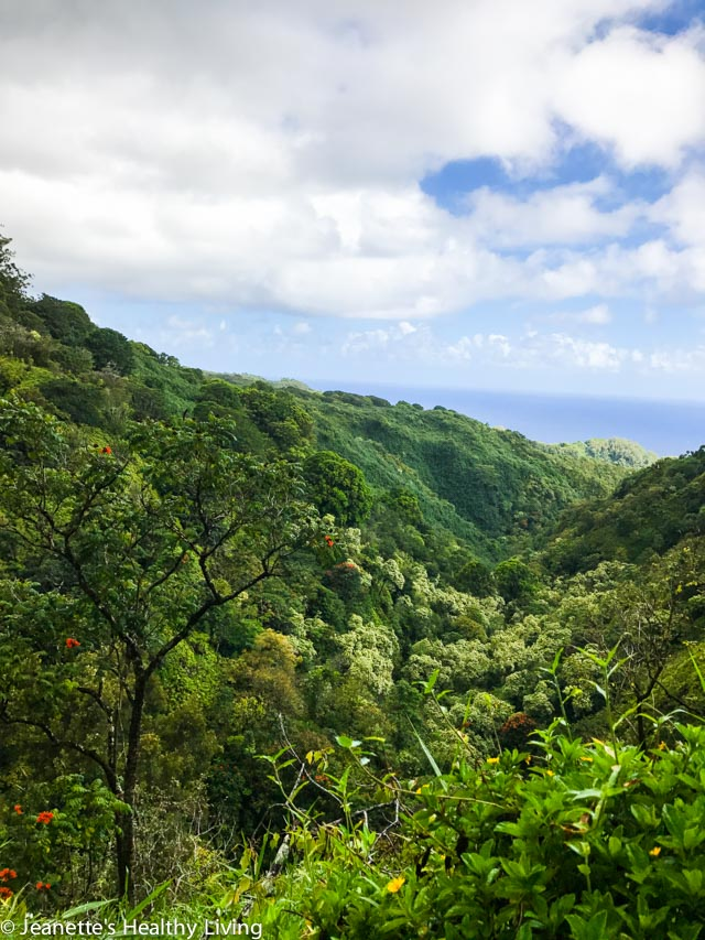 Road To Hana - beautiful views, waterfalls, lava tube, black beach, food trucks, coconut ice cream, banana bread