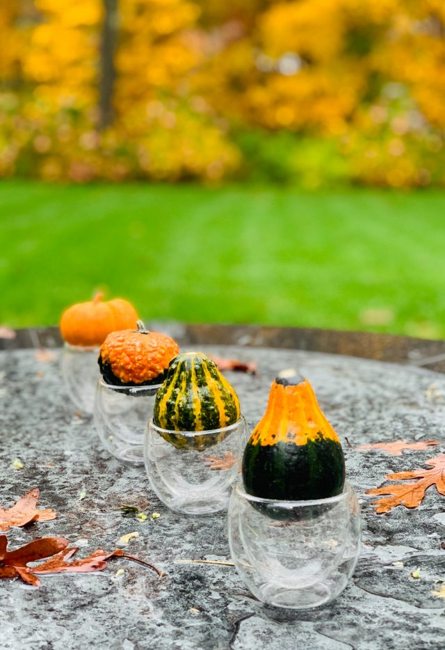 Fall Gourds Tablescape