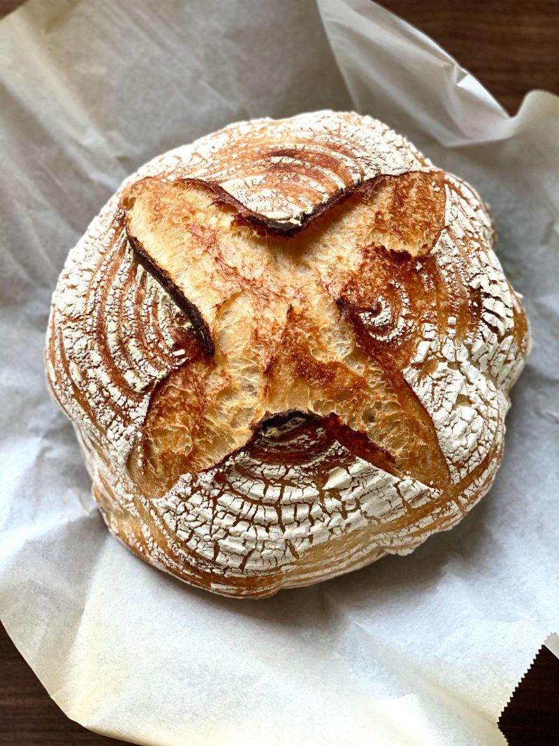sourdough bread owl face