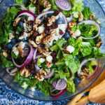 Blueberry Cranberry Aged Goat Cheese Walnut Salad © Jeanette