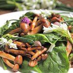 Warm Mushroom Spinach Salad